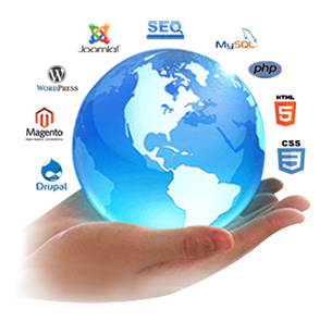 Web Development Services Gurgaon