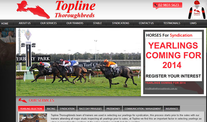 Topline Thoroughbreds